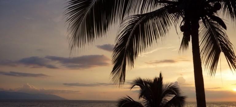 Strand, zon, tequila en een Piña Cocolada
